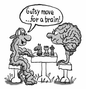 Brain-Gut-Chess-2